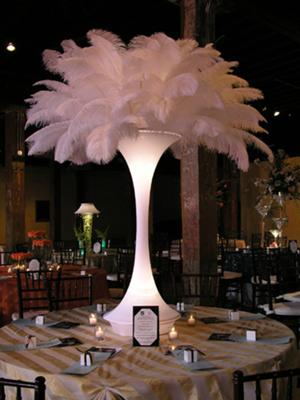 lighted feather vase