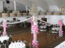 Balloon Columns and Canopy