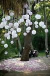 Balloons suspended upside down from a tree [Image found on Pinterest]